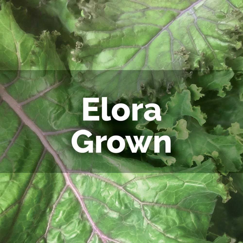 Kale - loose leaves